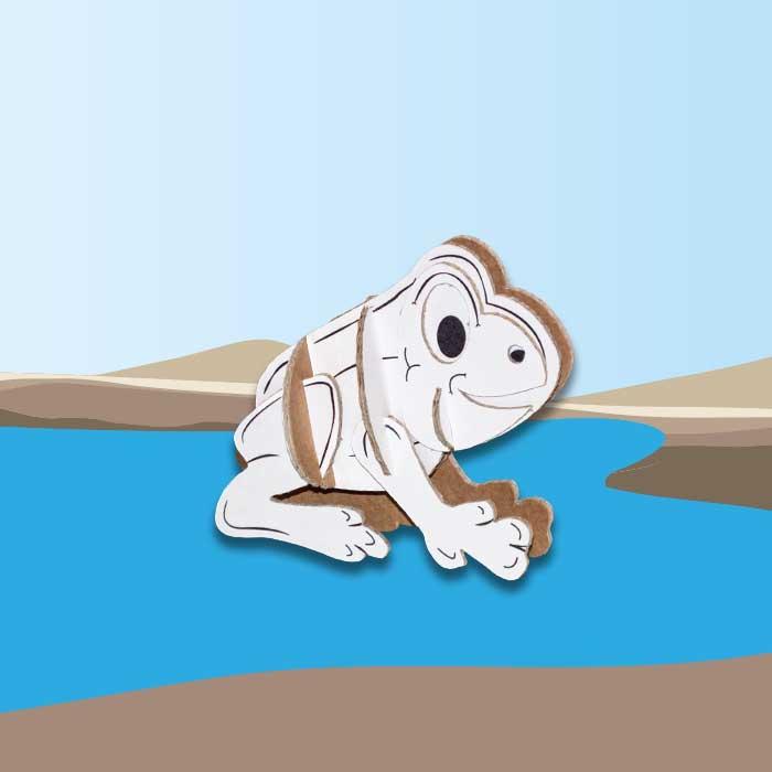 splash-rana-animaletti-cartone-sfondo